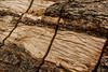 6-Aug-13<br /> <br /> Wooden Textures