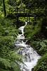 20-Sep-12<br /> <br /> Waterfall at Canonteign Estate, Devon.