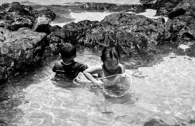 Children in Hawaii new LR - WB-9670 pse w c