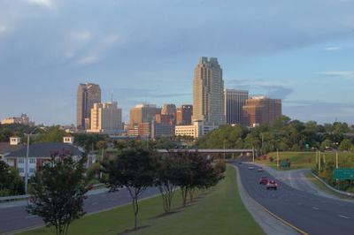 2006 Raleigh Skyline