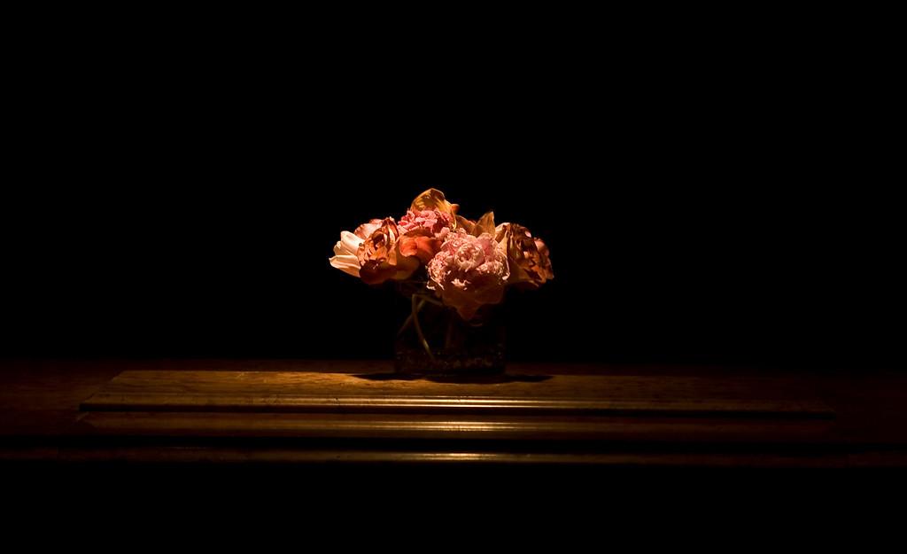 flowers-3713