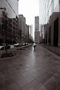 Street Scene-1224