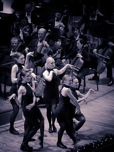 Symphony-6265