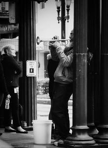 Trumpeter DSC_4012-Edit-1