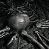 Bullock Museum skeleton on rope-0862