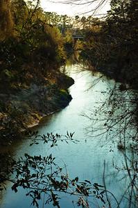Cypress Creek-2684