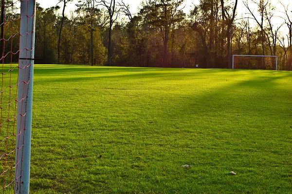 Soccer field-2706