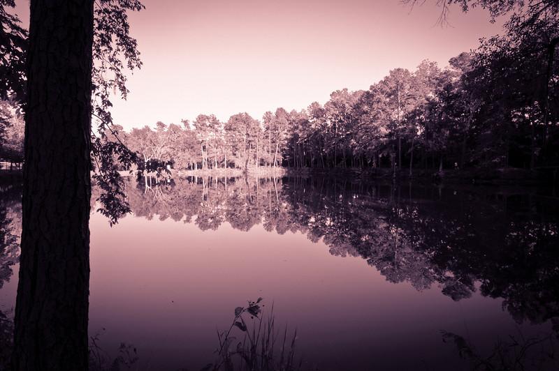 Sunset Photos-5224-2