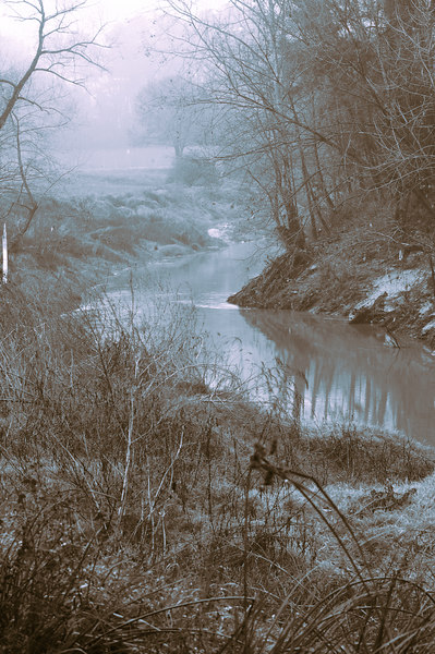 Looking down Cypress Creek 02