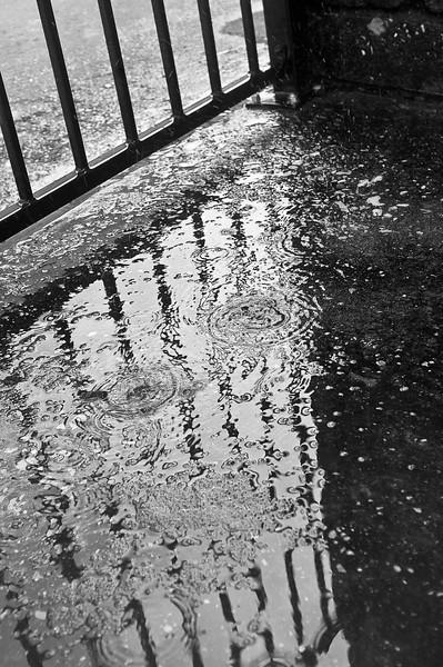 rain bw-8