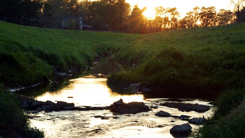 Sunset over cypress creek 01