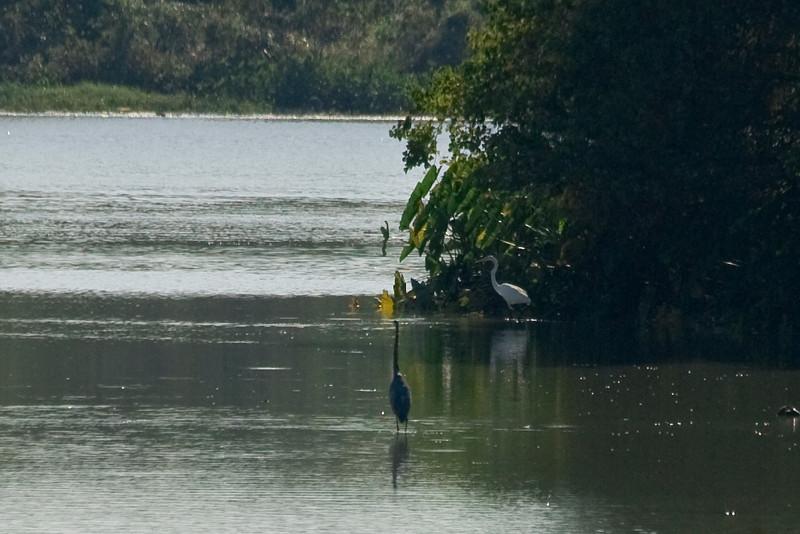 lake-8752