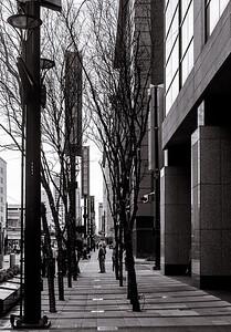 Street-0830