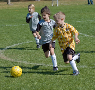 Cheetah Soccer-2935