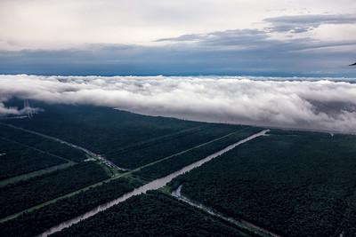 Louisiana-