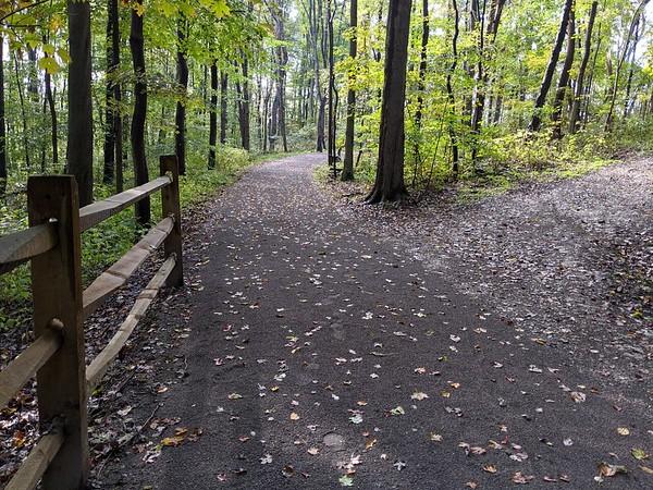 Buttrmilk Falls Pathway