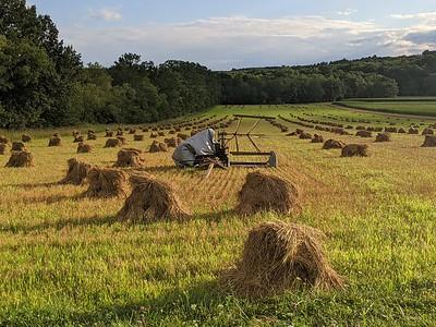 Smicksburg Farm Scene