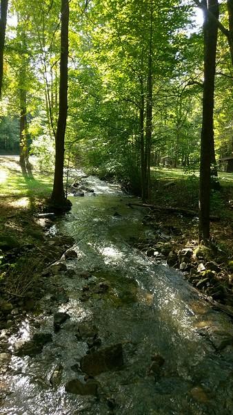 Flowing Waters at Tom's Run