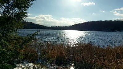 November Sunshine at Hemlock Lake