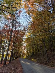 Entering Blue Spruce Park