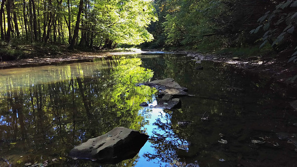 Early Fall on Two Lick Creek