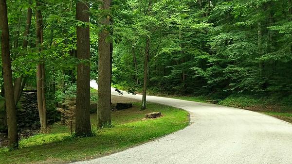 Tom's Run Road at Pine Ridge Park