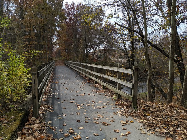 Hoodlebug Trail Bridge at Two Lick Creek