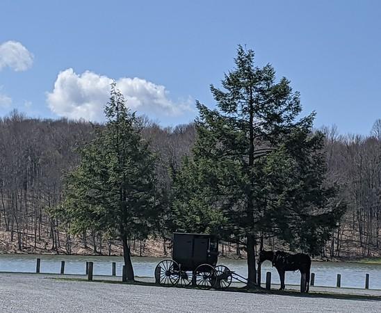 Amish Fishing Day at Hemlock Lake