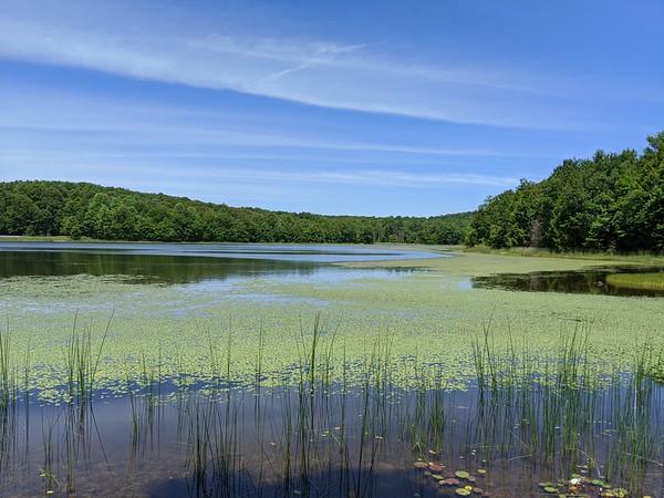 Hemlock Lake - June 17, 2020