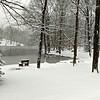 Spring Snow - March 21, 2018