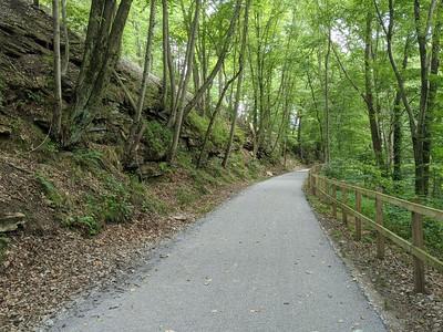 Hoodlebug Trail - August 12, 2020