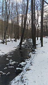 Tom's Run - Pine Ridge Park