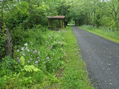 Hoodlebug Trail Scene