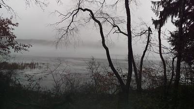 Descending Fog