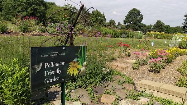 Pollinator Garden at Blue Spruce Park