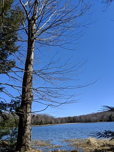 Blue Skies at Hemlock Lake