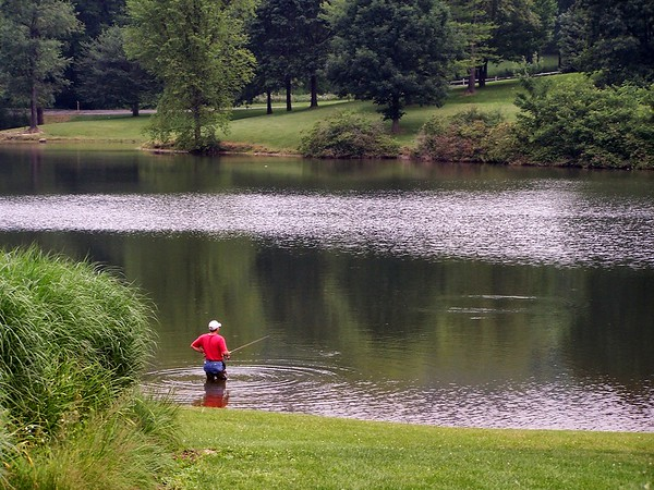 Fishing at Blue Spruce Park