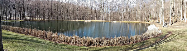 The Pond at Pine Lodge