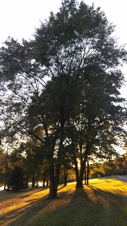 Fall Sunset at Blue Spruce Park
