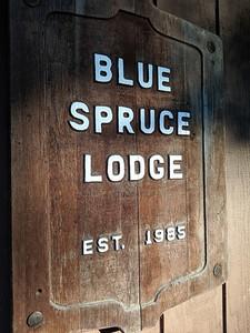Blue Spruce Lodge - Established 1985