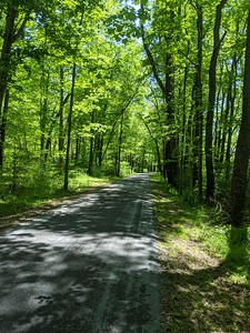 Hoodlebug Trail - Southern End