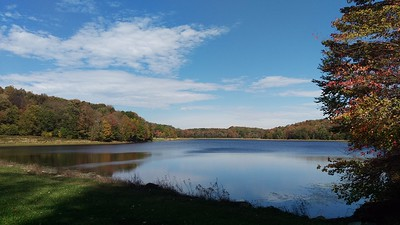 Changing Scene at Hemlock Lake