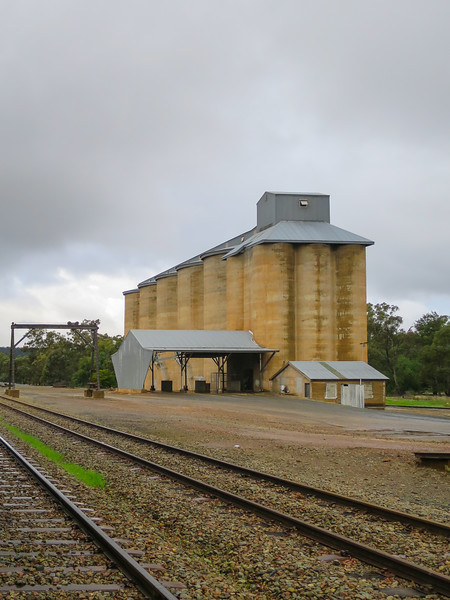 Silos  - Ardlethan, New South Wales