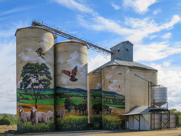 Silos - Grenfell, New South Wales