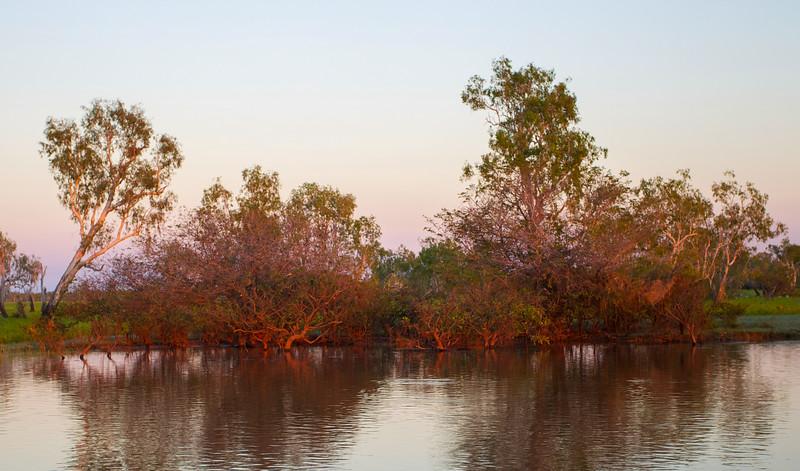 Corroboree Billabong, Northern Territory