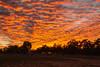 Sunset - Barcaldine, New South Wales