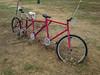 4 seat Bicycle - Ilfracombe, Queensland