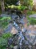 Nerima Gardens - Ipswich, Queensland