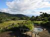 O'Reilly's Rainforest Retreat, Queensland