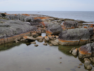 The Gardens - Bay of Fires, Tasmania